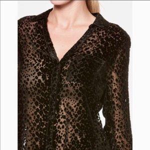 NEW PAIGE blouse